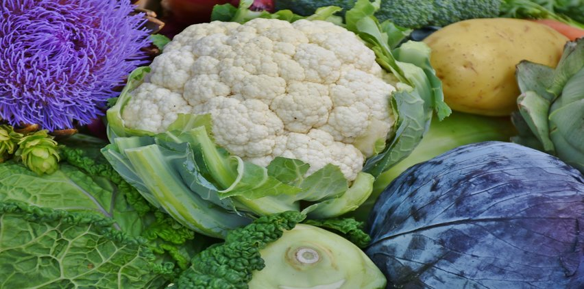 cauliflower fall food for weight loss