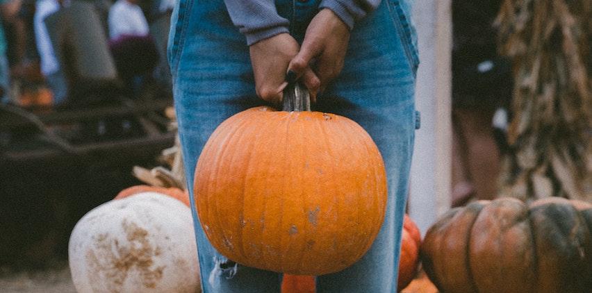 Woman holding a pumpkin at a pumpkin patch